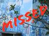 Week 49/52 Incumplido - Missed (VivaFoto) Tags: 2012 week49 522012 52weeksthe2012edition weekofdecember2