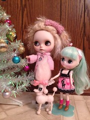 Happy New Year from Aggie, Trudie, & Pinky!