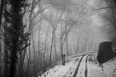Railing (robert suhonen photography) Tags: trees winter bw snow fog forest budapest railway buda childrensrailway diamondclassphotographer flickrdiamond bestcapturesaoi
