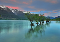 Floating Trees of Glenorchy (Nadly Aizat) Tags: road new city blue light sky panorama mountain lake snow reflection tourism nature water beautiful forest river landscape outdoors island harbor town scenery day cityscape village view dusk background south famous sightseeing scenic aerial rings zealand alpine nz otago queenstown popular range filming remarkables wakatipu glenorchy