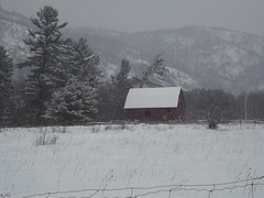 *Snowing Again!!! * (army-brat) Tags: barn snowflakes gatineau gatineaupark redbarn snowsnowsnow redbarnluskville