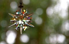 Swarovski ornament in afternoon sun (docoverachiever) Tags: light glass star rainbow bokeh ornament swarovski flickrchallengegroup beginnerdigitalphotographychallengewinner