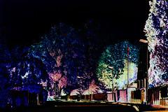 (psychedelic world) Tags: street art psychedelic wohltorf sackgasse strase deadendstreet psychedelicworld