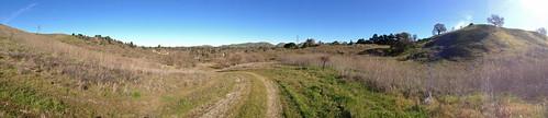 Panorama - Ridge