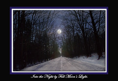 Full Wolf moon 1/26/2013 (gerrybuckel) Tags: winter sky moon snow nature stars countryside michigan scenic moonlight nightsky lunar absolutemichigan