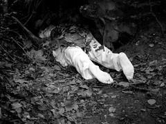 Prácticas para ocultar un cuerpo (el cadáver), 2009