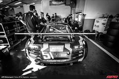 APR-Motorsport-Rolex-24-2013-003