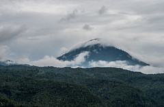 cloudy mountains (prose86) Tags: indonesia bali nature cloudy cloud clouds trees forest mood