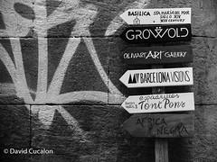 Follow it (David Cucaln) Tags: davidcucalon cucalon blackandwhite blanco y negro streetphotography fotografiacallejera carteles signs barcelona