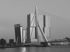 Zwaan met RD en KPN (Giel Pieter) Tags: bw rotterdam rotjeknor urban panasonic panasoniclumixgx7 holland nederland thenetherlands dutch building architectuur architecture bridge river maas skyline