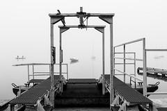 (Mat-S) Tags: grandlarge rhone rhonealpes lyon mist brume brouillard pcheurs voiliers fisherman noiretblanc blackandwhite boat bteaux