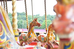 A galloping house (peter.tully64) Tags: ride fairground hourse steamcarousel beamish