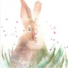 Bunny rabbit no. 2 (Sonia Aguiar (Mallorca)) Tags: art colorful acuarela watercolor aquarell rabbit conejo soniaaguiar bunnyrabbit