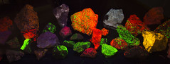 DUH_7102r (crobart) Tags: fluorescent minerals gem mineral club scarborough toronto show