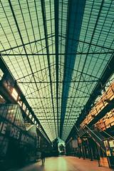 Galerie des machines#Nantes (stev LNG) Tags: arquitectura mtal nantes design structure galerie estructura gallery verre