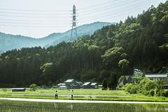 ( aikawake) Tags: kyoto  miyamanavi landscape beautiful scenery awesome mountain green tree love beauty gorgeous         fields country countryside