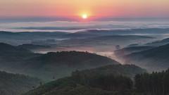 Sunrise (<-Y->) Tags: sunrise mystic fog clouds sky tree forest orange sun valley napkelte morning kd ngrdcounty erd magicdrainpipe 650d