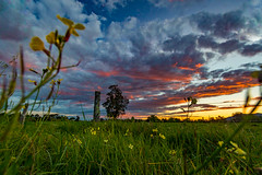 Berry Sunset (Andy Hutchinson) Tags: summer landscape berry australia flowersplants shoalhaven spring wildlife nsw