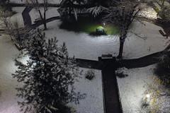 Primi timidi fiocchi (drugodragodiego) Tags: snow alberi neve nightscene brescia lombardia giardini urbanlandscape notturno fujifilmx10