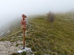 Alla Foce di Valli (Emanuele Lotti) Tags: park italy parco costa mountain montagne trekking italia 25 tuscany toscana nebbia alpi montagna apuane 2012 monti ottobre valli foce escursionismo pulita