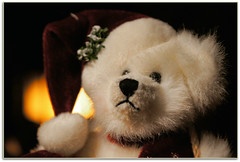 Snow Bear (scrapping61) Tags: stilllife feast holidays decoration legacy 2012 tistheseason swp forgottentreasures artdigital scrapping61 daarklands trolledproud exoticimage pinnaclephotography netartii