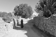 BAR_6290 (Bougherbal Ammar Redouane) Tags: bar algeria ammar algrie sud dsert ain zaouia redouane madhi laghouat tidjania tidjaniya bougherbal