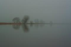 And 2012 is slowly fading away.... (J@N187) Tags: mist reflection tree water dutch silhouette misty fog landscape polder alblasserwaard landschap stil alblasserdam