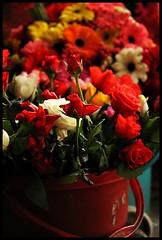 Flowers@Market (Midhun Manmadhan) Tags:
