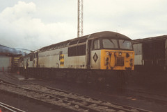 56081 Knottingley 250493 (Dan86401) Tags: grid br openday class56 coalsector knottingley 56081 type5