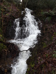 Side Falls (fabbird1964) Tags: water wales mono waterfall neathvalley melincourtfalls