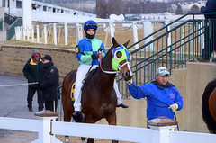 2012-12-27 (58) r5 Grant Whitacre on #6 Hong Kong Harry (JLeeFleenor) Tags: horses ma caballo cheval photography photos uma lo cal jockeys gigi cavallo cavalo pferd equestrian kin each kuda alogo equine hest thoroughbreds soos hevonen cuddy paard cavall kon koin laurelpark  hast hst ceffyl   ko faras hestur  perd  konj    capall beygir yarraman pfeerd marylandhorseracing grantwhitacre laurelracecourse marylandracing laurelparkracecourse