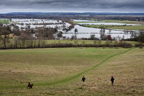 Flooded Thames valley from Wittenham Clumps