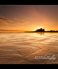 Golden Dawn (Mike Ridley.) Tags: england sunlight seascape colour beach sunrise canon reflections landscape coast northumberland canon1740mmf4lusm bamburghcastle leefilters mikeridley canon5dmkll customcolourtemperatureincamera
