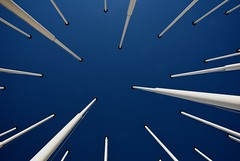 Pointing to the sky (Paulo N. Silva) Tags: blue sky white flags parquenacoes