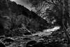Garganta Alardos (chencho ©) Tags: bw white mountain black blanco rio river de la pentax negro horror vera tetas km halos madrigal culos garganta pentaxkm alardos pentaxart pentaxk2000 masteroftags