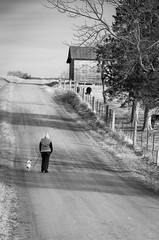 Taking a stroll (Dan:Brown) Tags: road bw rural virginia farm lr4 d7000