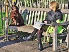 Womans Best Friend (jaykay72) Tags: street uk london candid streetphotography stjamespark londonist stphotographia