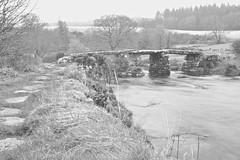 In the bleak mid-winter (PaulBartlett) Tags: uk bridge england blackandwhite nature water river landscape mono countryside nikon scenery outdoor devon dartmoor clapper d3100