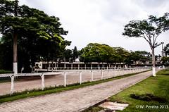 Jockey Club de So Paulo (W. Pereira) Tags: sopaulo sampa jockey cavalos cidadejardim cavalosdecorrida jockeyclubsopaulo rolsp wpereira wanderleypereira jockeyclubsopaulo wanderleypereiracavaloscavalosdecorridacidadejardimjockeyclubsopaulosampasopaulowpereirawanderleypereira