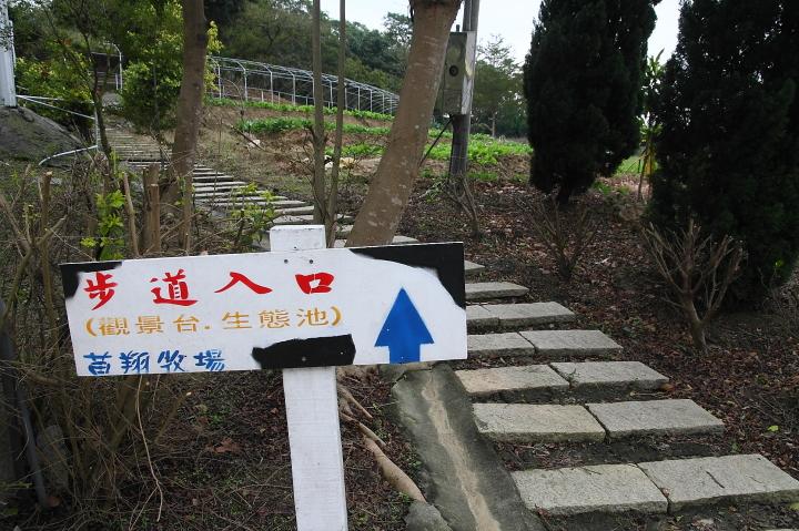苗翔牧場(牛奶的故鄉)004