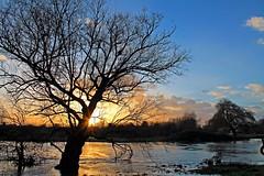Wet Feet (Rob Felton) Tags: sunset sky sun water clouds river landscape bedford flood scenic bedfordshire naturereserve wetlands felton floodplain greatouse robertfelton fenlake fenlakemeadowslocalnaturereserve