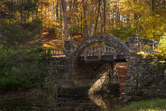 Bridge at frog pond (Nature Shooter) Tags: singhray galenrowellndfilter gillettecaste workshopwithedheaton