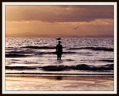 Iron man silhouette (Bev Goodwin) Tags: sunset sea england liverpool waves ironman seabirds crosby antonygormley merseyside anotherplace ironmen crosbybeach
