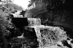 Wasserfall am Wallgraben 1 (Lichtabfall) Tags: landschaftsgarten water wasser einfarbig blackwhite blackandwhite monochrome schwarzweiss waterfall wasserfall plantenunblomen hamburg
