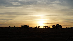 Sunset in the countryside (aemb01) Tags: sunset couch soleil campagne countryside landscape moissonneusebatteuse harvester