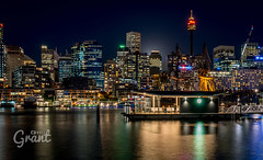 Night Ferry (Grant Wolz) Tags: sydney australia night city darlingharbour a6300 cityscape ferry