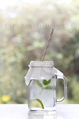 refreshing (ggcphoto) Tags: refreshing refreshments drink lime mint freshness water still life bokeh leaf glass glassjar table day vertical chilledwater light