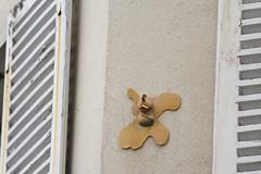 Tefi_8627 rue Tiphaine Paris 15 (meuh1246) Tags: streetart paris tefi ruetiphaine paris15 animaux oiseau
