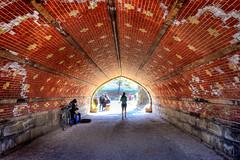 Central Park Tunnel (juliekrugerart) Tags: trail girl julie kruger photography new york manhattan motion hustle bustle nikon d810 metropolitan museum brooklyn bridge grand central station taxis world trade center subway