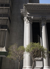 DSCF3447 (olkinn) Tags: ca cali california sf san francisco fuji digital building architecture trees column greek city light shadow usa x100t
